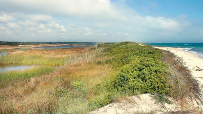 Spiaggia Cesine, 100 mila euro per la bonifica
