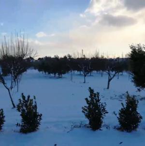 Maltempo, 10 mln per le nevicate di gennaio