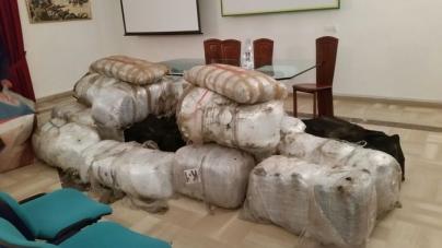 Sequestrati 510kg di marijuana del valore di 5 mln di euro