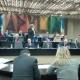 Xylella: rinviata discussione sulla legge