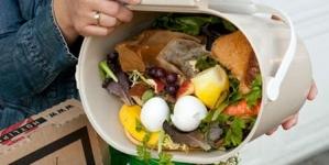 Sprechi alimentari: 310mila t all'anno di cibo buttato