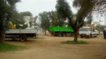 TAP, il Tar del Lazio sospende autorizzazioni per l'espianto degli ulivi