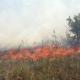Roghi estivi: Lecce la provincia più colpita con 1617 incendi