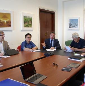 Trattamento Xylella, la Regione Puglia contro le ordinanze dei sindaci