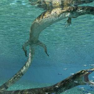 Trovati resti di un rettile preistorico: fossile ha 70 milioni di anni