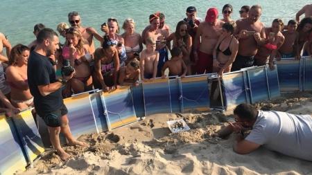 Nido di tartarughe scoperto sulla spiaggia di Torre Lapillo