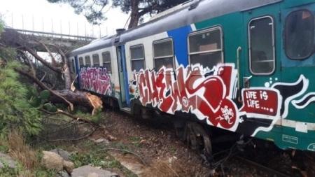 Tromba d'aria causa la caduta di un albero su un treno: nessun ferito