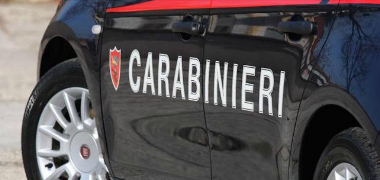 Testa di agnello davanti casa commerciante: indagini dei Carabinieri