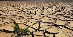 Siccità, Coldiretti: «Necessaria irrigazione di soccorso»