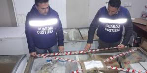 Sequestrati 3 quintali di pesce nel Salento dalla Guardia Costiera
