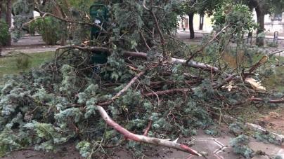 Nubifragi e una violenta tromba d'aria: danni in tutto il Salento