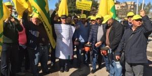 Xylella, la protesta di Coldiretti Puglia con i trattori