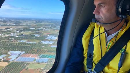 Xylella, la strage degli ulivi vista dall'alto: stamane il volo sui 165 km di area infetta