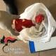 Spaccio di droga tra Brindisi e Lecce: 10 arresti dei Carabinieri