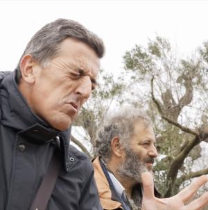 """C'ERA UNA VOLTA UN ALBERO"" al SIFF 2019"