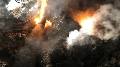 Anziano abbandona e brucia rifiuti nelle campagne salentine: denunciato