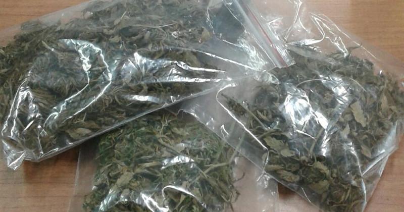 Sorpreso con un trolley pieno di marijuana: arrestato nel Lazio un 21enne salentino