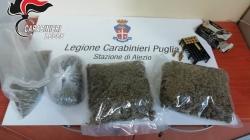 Quasi un chilo di marijuana nascosta fra i rovi: la scoperta nelle campagne salentine
